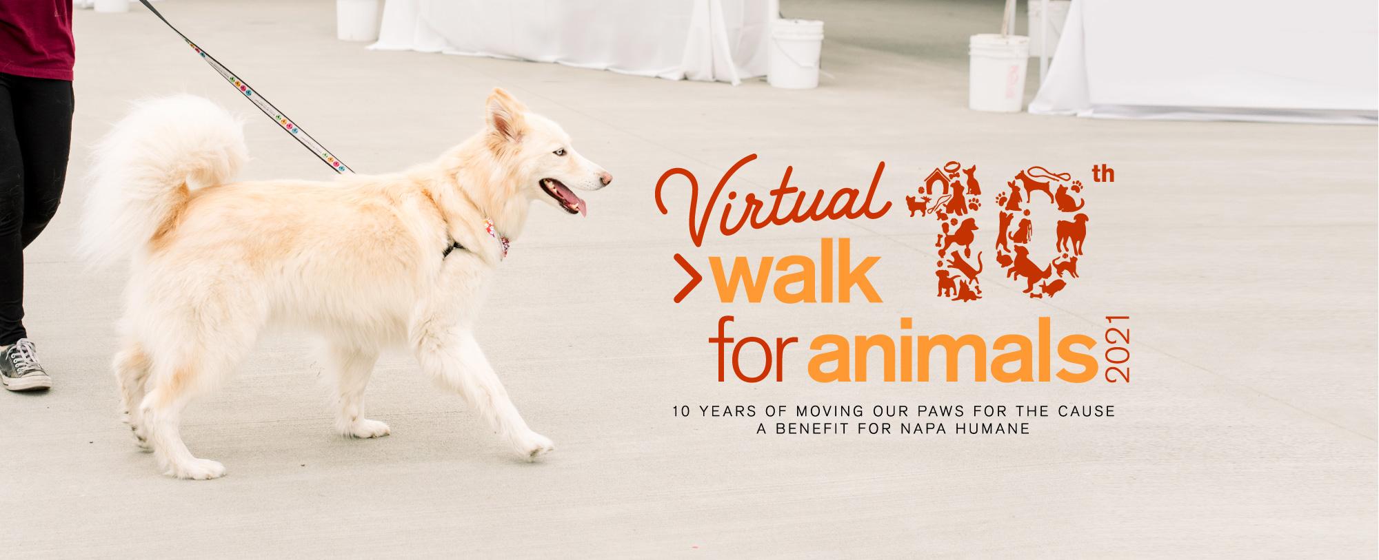 Napa Humane Society